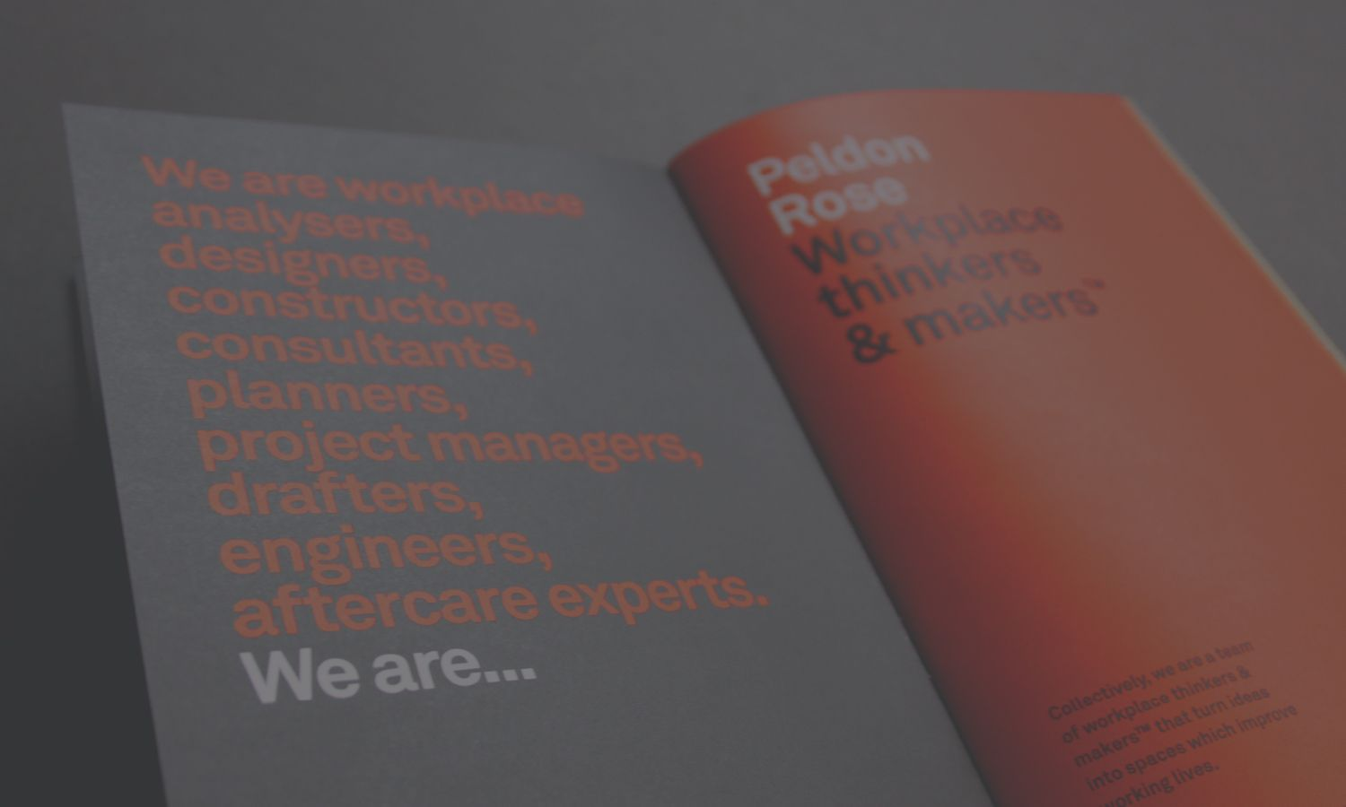 Deep design agency, branding project Peldon Rose guidelines